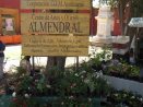 Barrio Almendral