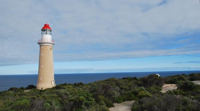 Kangaroo Island: a Austrália em seu esplendor!