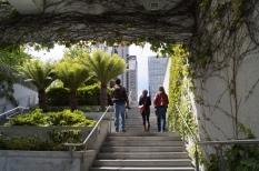 Parque Yerba Buena