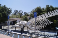 Santa Barbara (EUA)