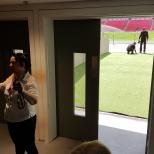 Estádio de Wembley