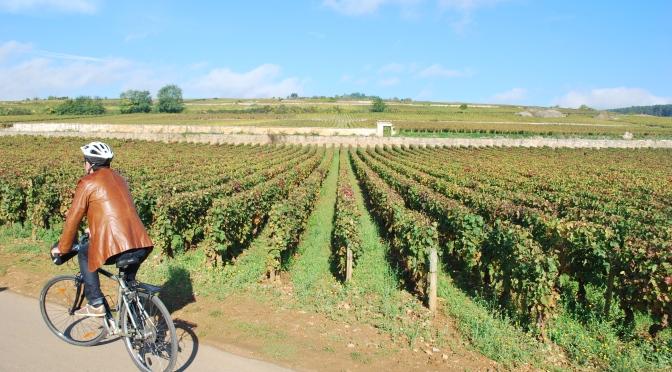 Borgonha: seus vinhedos e suas delícias