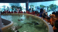 Downtown Aquarium