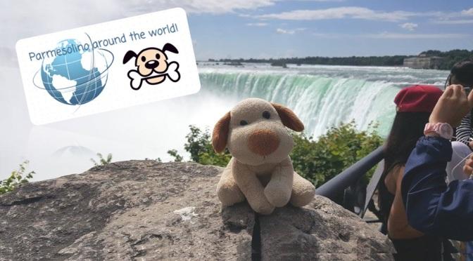 Cão, cá, no Canadá!