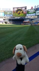 Yankee Stadium (Nova York)