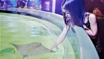 Cleveland_Aquarium