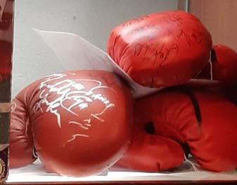 Luvas autografadas por Mike Tyson e outros boxeadores