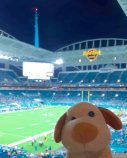 Miami Dolphins - Hard Rock Stadium