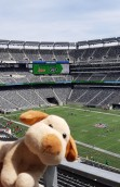 MetLife Stadium - New York Jets/Giants