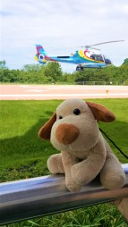 Passeio de helicóptero sobre as cataratas!