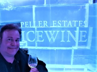 Ice bar da Vinícola Peller