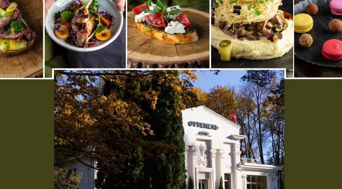 Ottepel Restaurant: segredos da cozinha russa