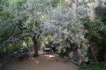 Ateliè Cézanne