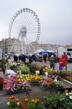 A Grande Roue de Marseille